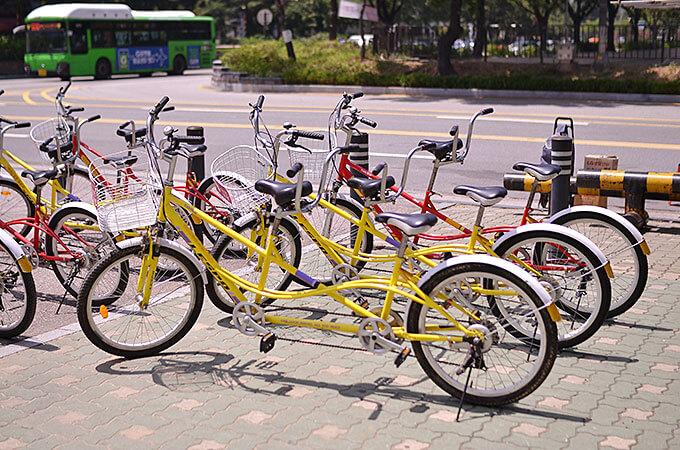 汝矣島(ヨイド)公園で自転車をレンタルして楽しむ!