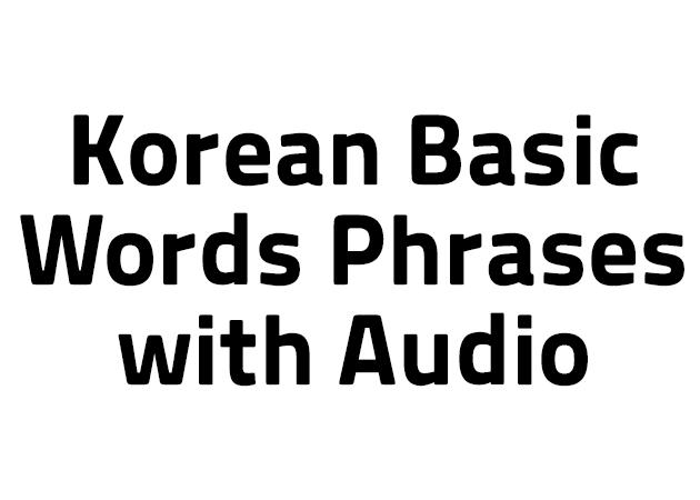 100 Korean Basic Words Phrases with Audio