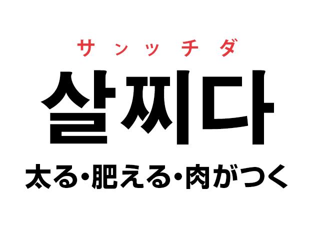 韓国語の「살찌다 サルッチダ(太る・肥える・肉がつく)」を覚える!